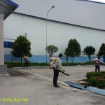 Kiểm soát côn trùng nhà máy Colgate – Palmolive Việt Nam