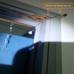 Cách diệt mối – Phòng chống mối mọt gây hại khung cửa