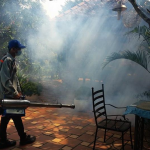 Công ty phun thuốc diệt muỗi tại Long An