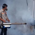 Công ty phun thuốc diệt muỗi tại Bình Thạnh – TP.HCM