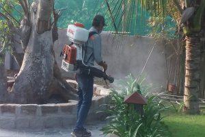Dịch vụ diệt phun diệt muỗi tận gốc Hải Dương