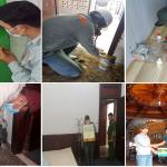 Công ty diệt mối tại nhà tp Hồ Chí Minh