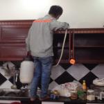Hướng dẫn cách diệt mối và phòng chống mối cho tủ bếp