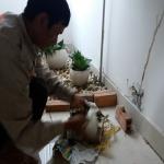 Công ty diệt trừ mối tại tp Nha Trang – Khánh Hòa