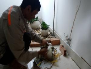 Dịch vụ phun diệt muỗi thành phố Đà Nẵng