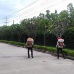 Dịch vụ phun diệt muỗi ở Hà Nam