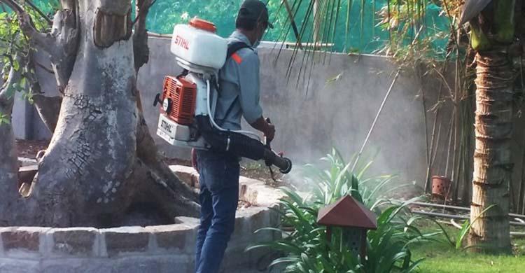 diệt ruồi tận gốc tại Đà Nẵng