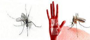 Dịch vụ diệt muỗi tận gốc Hưng Yên