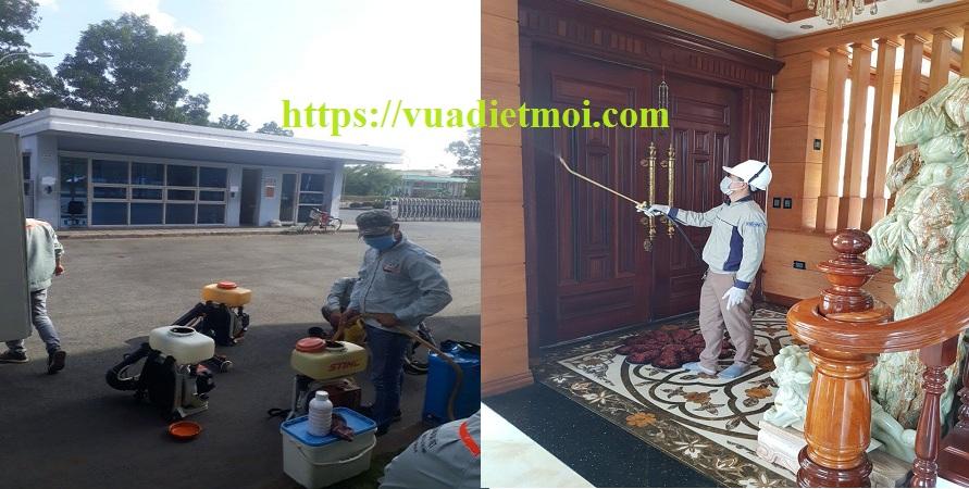 Công ty diệt côn trùng Thái Nguyên