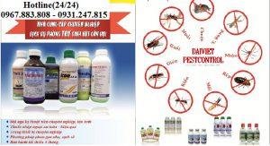 Công ty diệt côn trùng chuyên nghiệp tại Đăk Lăk